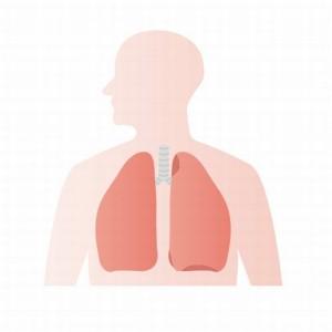 腹式呼吸効果